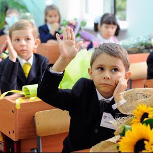 Школы Вербилков